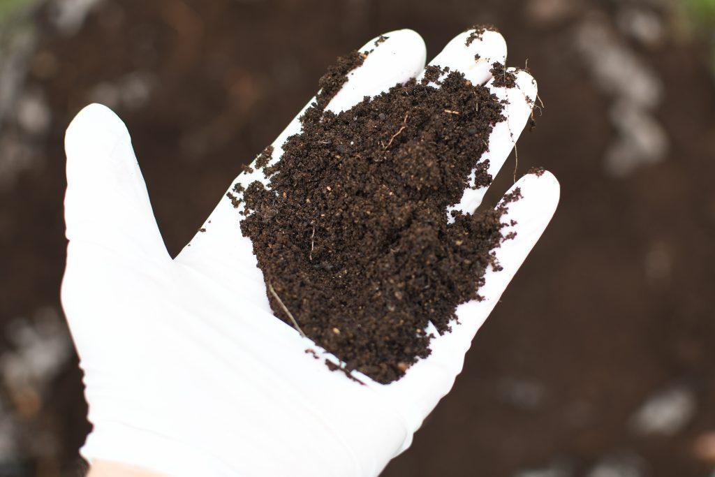 compost humanure