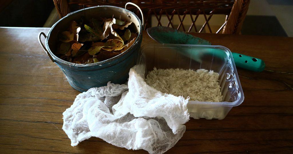 compost starter essentials